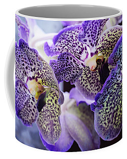 Aliens. Orchids From Keukenhof. Netherlands Coffee Mug
