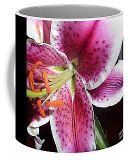 Mystery 6 Coffee Mug