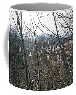 Coffee Mug featuring the photograph All Aglow by David Porteus