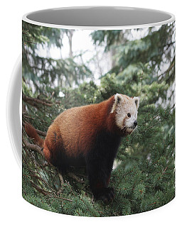All Alone Coffee Mug by Judy Whitton