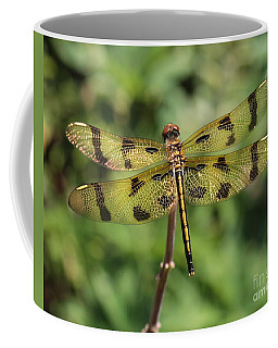 All That Glitters Is Gold Coffee Mug by Kenny Glotfelty