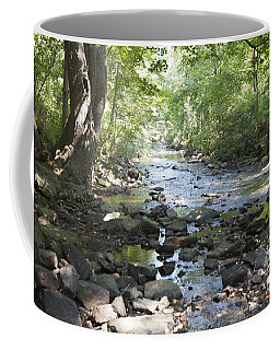 Coffee Mug featuring the photograph Allen Creek by William Norton
