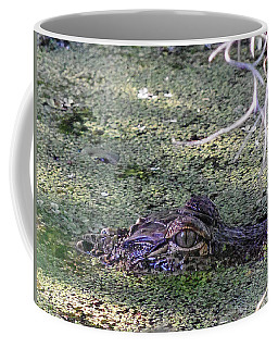 Alligator 019 Coffee Mug