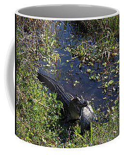 Alligator 020 Coffee Mug