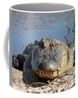 Alligator Approach Coffee Mug by Al Powell Photography USA