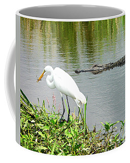 Alligator Egret And Shrimp Coffee Mug by Al Powell Photography USA
