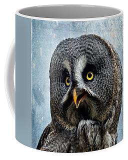 Allocco Della Lapponia - Tawny Owl Of Lapland Coffee Mug
