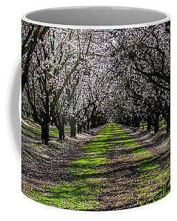 Almond Grove Coffee Mug