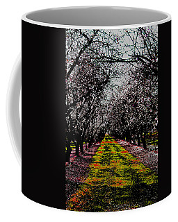 Almond Trees In Bloom Coffee Mug