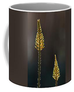 Aloe Plant Coffee Mug
