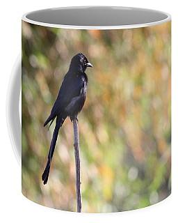 Coffee Mug featuring the photograph Alone - Black Drongo  by Ramabhadran Thirupattur