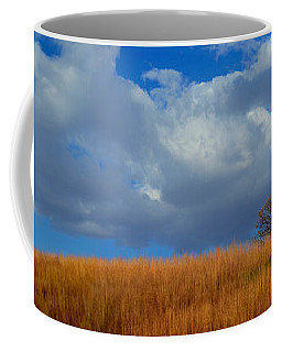 Along Big Bluestem Ridge Coffee Mug
