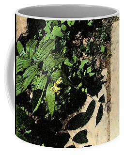 Coffee Mug featuring the digital art Along The Path by David Blank