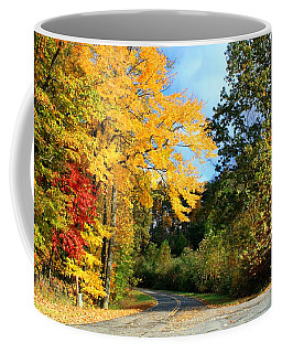 Coffee Mug featuring the photograph Along The Road 2 by Kathryn Meyer