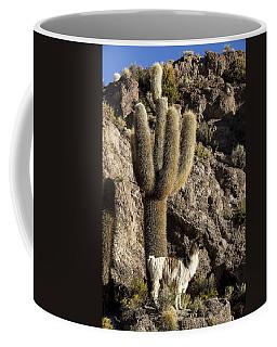 Alpaca Incahuasi Island Coffee Mug