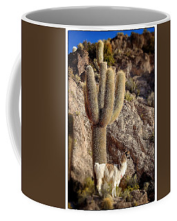 Alpaca Incahuasi Island  Select Focus Coffee Mug