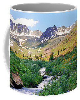 Alpine Vista With Wildflowers Coffee Mug