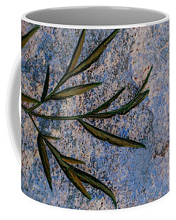 Coffee Mug featuring the photograph Altered State by Judy Wolinsky