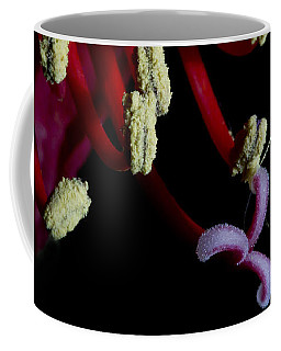 Amarilla Flower   #9398 Coffee Mug