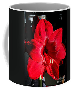 Coffee Mug featuring the photograph Amaryllis Named Black Pearl by J McCombie