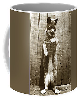 Coffee Mug featuring the photograph Amateur Feline Fotografer Cat With A Box Camera  Historical Photo 1900 by California Views Mr Pat Hathaway Archives