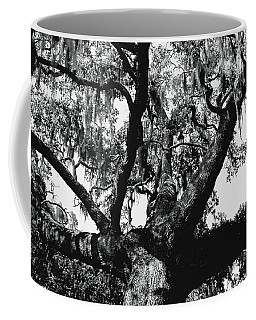 Amazing Oak Tree Coffee Mug by Debra Forand