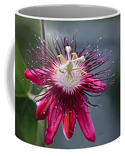 Amazing Passion Flower Coffee Mug