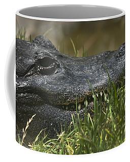 Coffee Mug featuring the photograph American Alligator Closeup by David Millenheft
