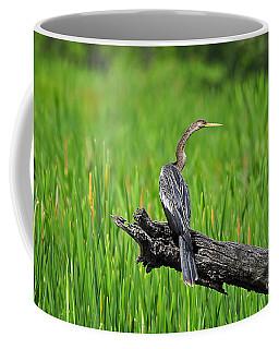 American Anhinga Coffee Mug