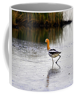American Avocet Coffee Mug by Al Powell Photography USA