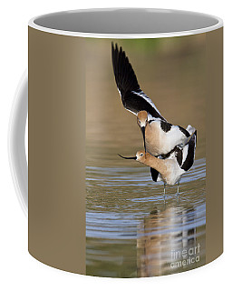 American Avocets Coffee Mug