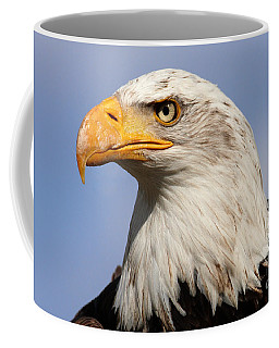 Coffee Mug featuring the photograph American Bald Eagle by Nick  Biemans