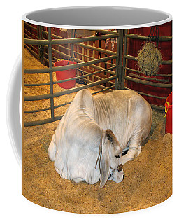 American Brahman Heifer Coffee Mug by Connie Fox