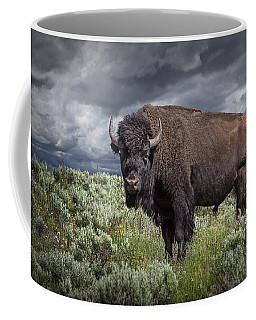 American Buffalo Or Bison In Yellowstone Coffee Mug