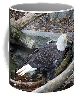 American Eagle Coffee Mug by John Telfer