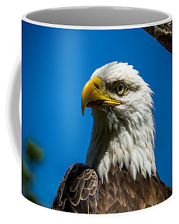 American Icon Coffee Mug