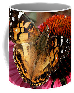 American Lady  Coffee Mug by James C Thomas