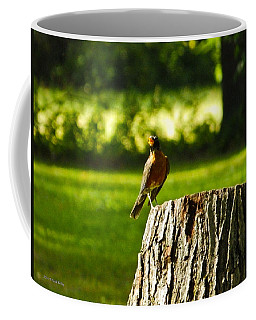 Coffee Mug featuring the photograph American Robin by Nick Kirby