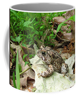American Toad Coffee Mug