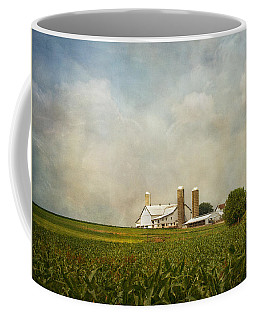 Coffee Mug featuring the photograph Amish Farmland by Kim Hojnacki