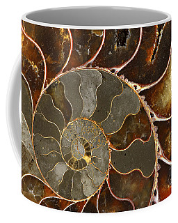 Ammolite Coffee Mug by Elena Elisseeva