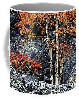 Among Boulders Coffee Mug