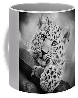 Amur Leopard Cub Portrait Coffee Mug