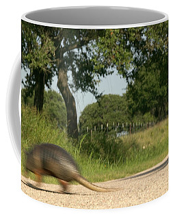 An Armadillo Makes A Dash To Cross Coffee Mug