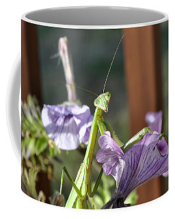 Coffee Mug featuring the photograph An Autumn Surprise by Verana Stark