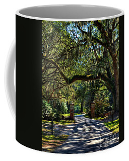 Coffee Mug featuring the photograph An Open Gate 3 by Mel Steinhauer