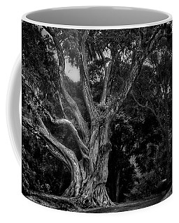 Ancient Tree Coffee Mug