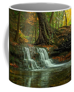 Coffee Mug featuring the photograph And God Proclaimed His Creation Good by Skip Tribby