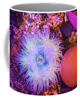 Anemone And Friends Coffee Mug