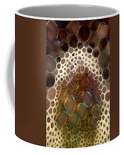 Angelica Sp. Stalk Tissues, Lm Coffee Mug